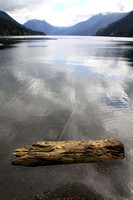 Crescent Lake Floating Log